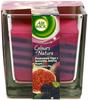 Air wick świeca ribbons purpurowa figa z soczystą jeżyną