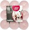 Podgrzewacz magnolia 18 szt/op