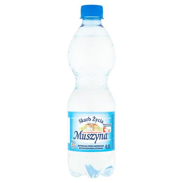 Muszyna Skarb Życia Naturalna woda mineralna wysokozmineralizowana lekko gazowana 0,5 l