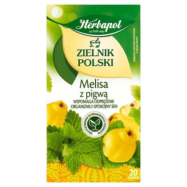 Herbapol Zielnik Polski Herbatka ziołowo-owocowa melisa z pigwą 35 g (20 x 1,75 g)