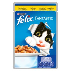 Karma Felix Fantastic z kurczakiem