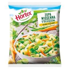 Zupa wiosenna Hortex