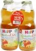 Herbata z kopru włoskiego z sokiem jabłkowym bio 2x0,5l