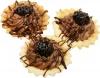 Babeczki wiśniowe -pallada