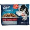 Felix fantastic wołowina kurczak 3+1 gratis