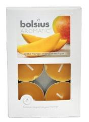 Podgrzewacz zapachowy mango 6szt/op