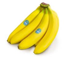 Banany - Ekwador / Kolumbia