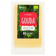 Ser Gouda bio plastry