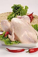 Kurczak tusza bez podrobów