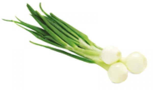 Cebulka szczypior