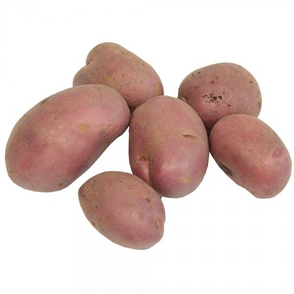 Ziemniak czerwony