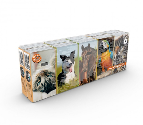 Chusteczki King Animals 10x10 /szt