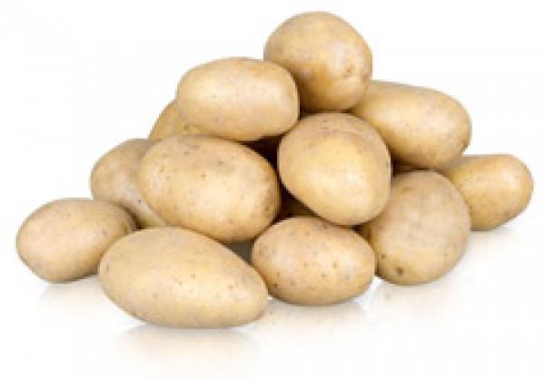 Ziemniak wczesny luz