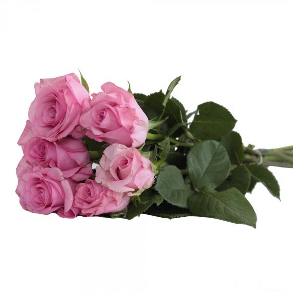 Róża bukiet 7 sztuk 40cm